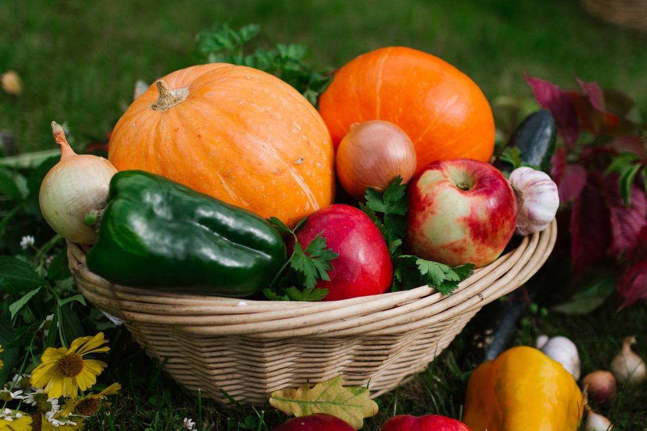 Gemüsekörbe gibt es in zahlreichen unterschiedlichen Ausführungen. Auch bei den Materialien gibt eine große Auswahl.